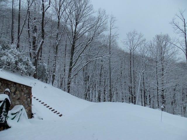 snow032513