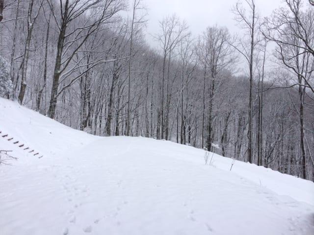 snow031714