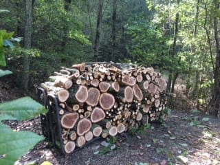 woodpileOct2018